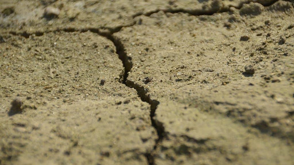 Sécheresse Ardèche : niveau critique et une région bientôt reconnue en situation de calamité agricole.