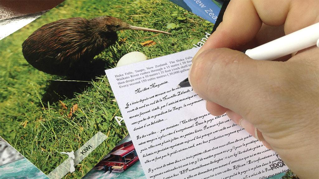 Séance cartes postales pour l'éleveur voyageur. Marguerite n'et pas oubliée.