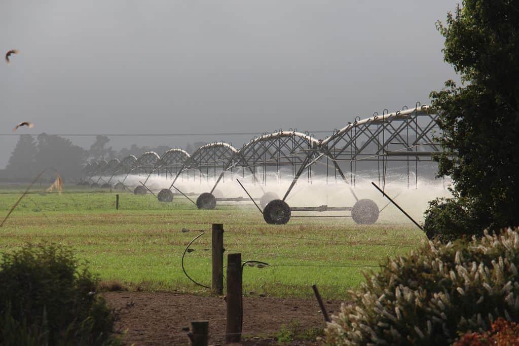 Nouvelle-zelande-elevage-laitier-lait-eleveur-canterbury-jeff-gould-intensif-logettes-irrigation