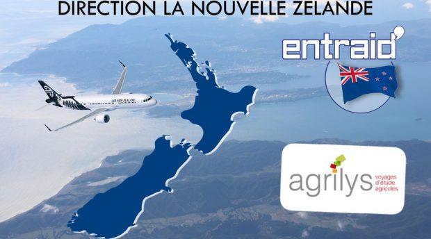 Filière laitière Nouvelle Zélande : cap sur la Nouvelle Zélande avec une série de quinze reportages réalisés par Ronan Lombard, journaliste chez Entraid.