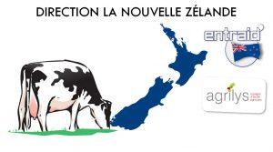 production laitière Nouvelle Zélande