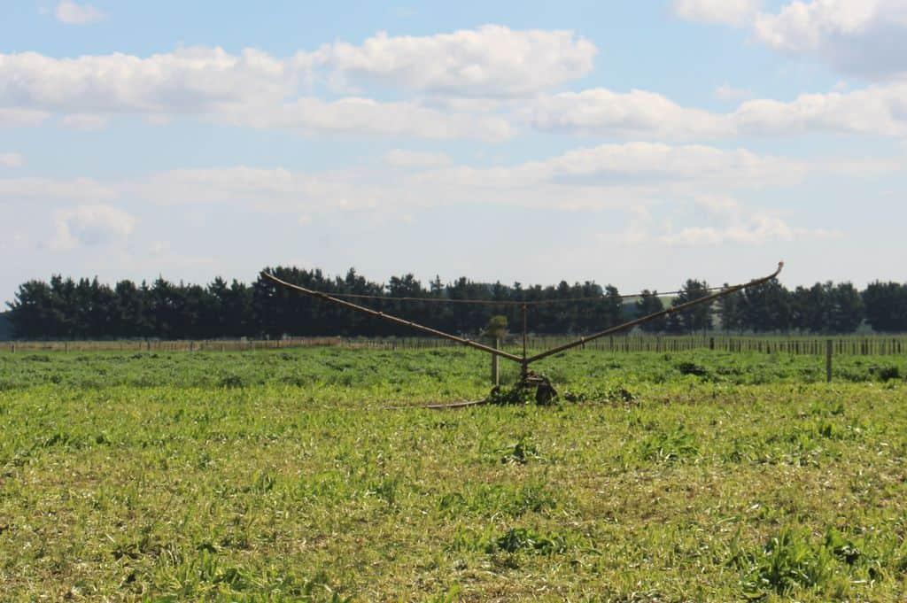 Système-arroseur-irrigation-ependage-effluents-nouvelle-zelande-elevage-laitier