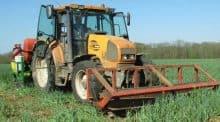 semis direct maïs sous couvert