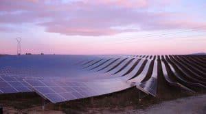 photovoltaïque, Charente, bovins, activité agricole,
