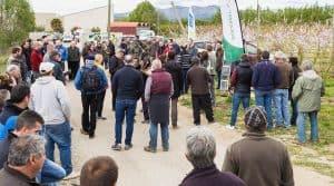 Une démonstration de matériels de travail du sol en arboriculture dns les Pyrénées-Orientales.