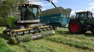 Ensileuse Claas au travail sur l'herbe