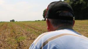 réglementation salarié L'essentiel de l'employeur agricole avec notre partenaire CERFRANCE.