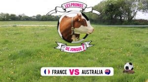 Pronostics de Jonque la vache à la coupe du monde de Foot 2018