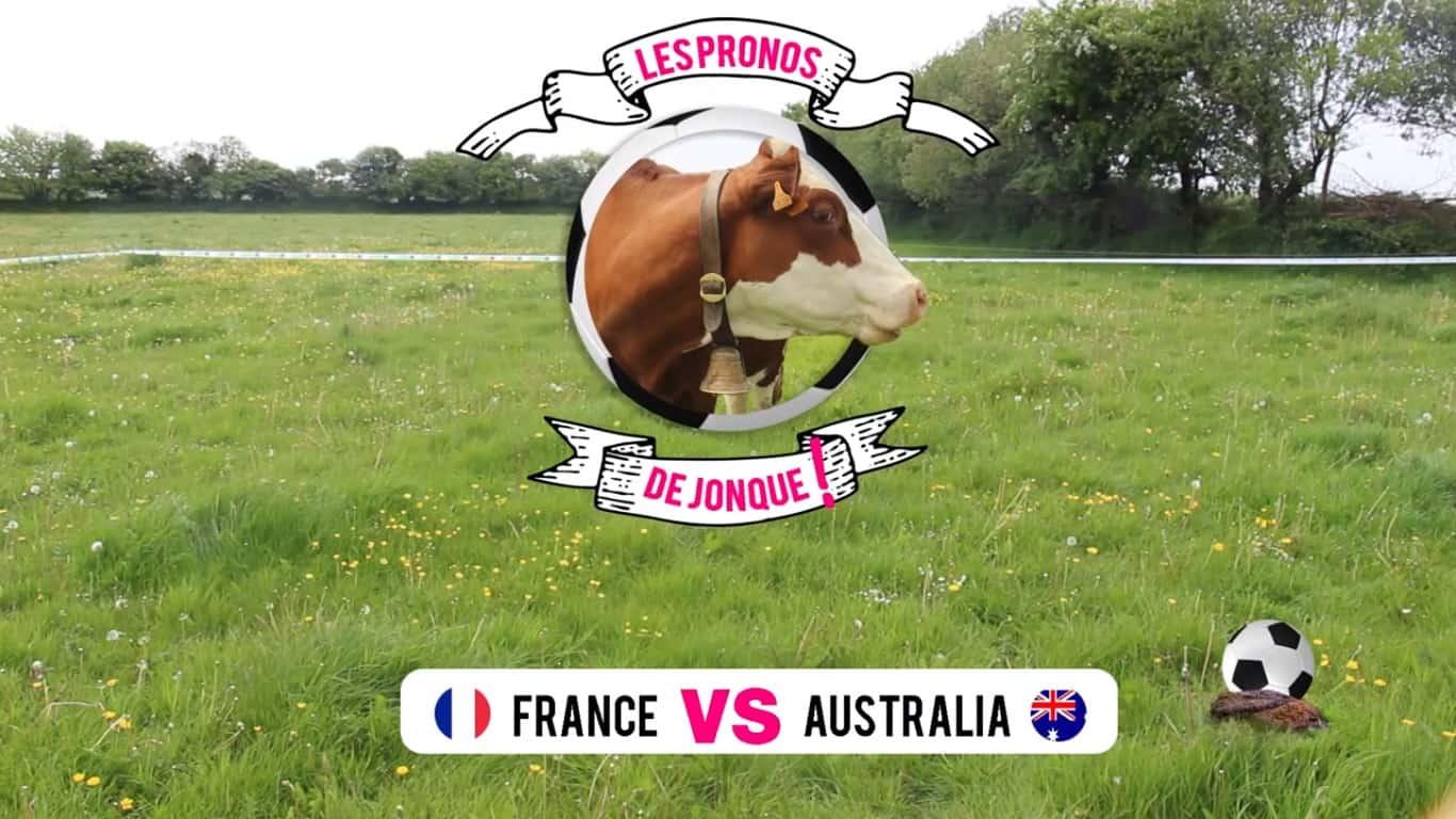 Pronostics de jonque la vache la coupe du monde de foot 2018 - Resultat de la coupe de france de foot ...