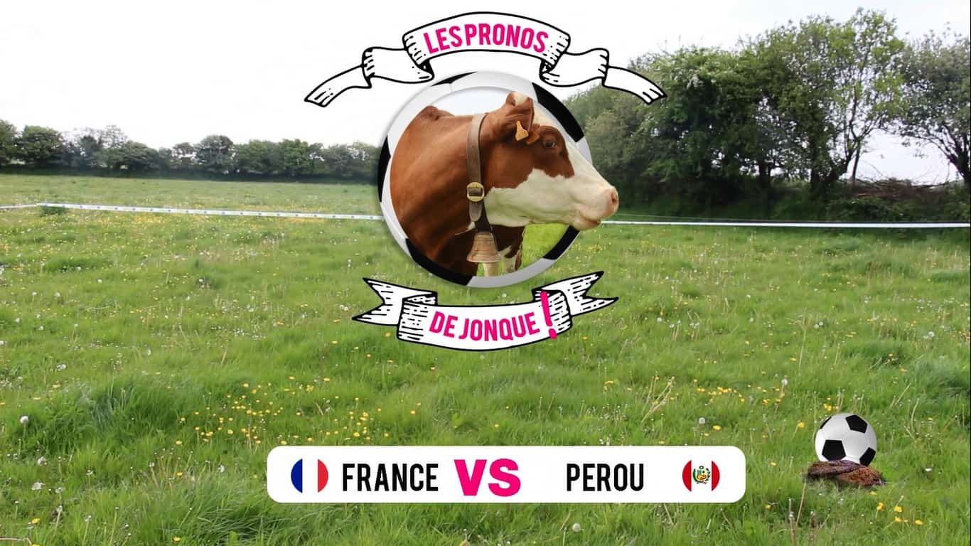 Match france p rou les pronostics d 39 une vache pour la coupe du monde de foot 2018 - Match de foot coupe de france en direct ...