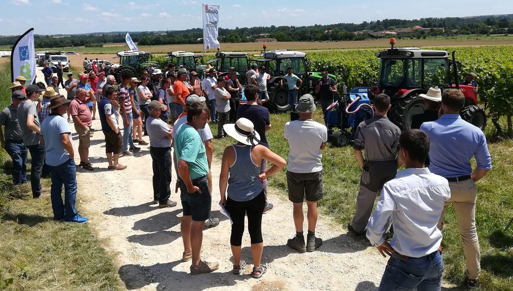 désherbage vigne en Charente