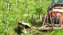 tonte, arboriculture, Cher, Frcuma Centre-Val de Loire, cuma de Salleroy, St Martin d'Auxigny, agriculture biologique,