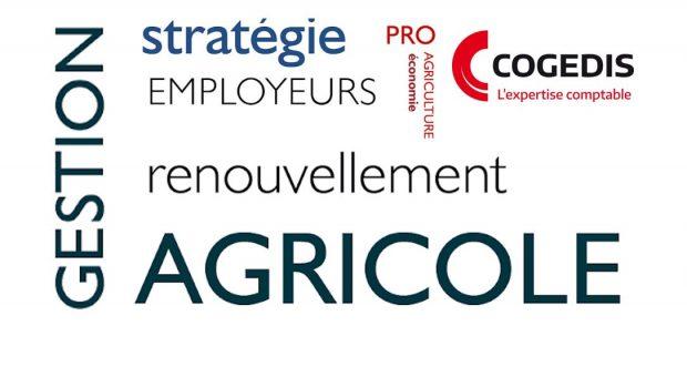 Gestion agricole stratégie