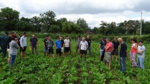 Une rencontre bout de chmap dans le cadre de la relance de la filière betterave fourragère en Aveyron.