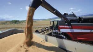 bilan des moissons 2018, moisson blé