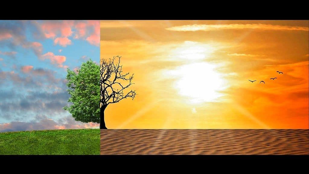 impact du réchauffement climatique