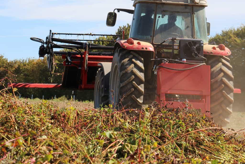 Faucheuse andaineuse Equip'Agri : vue arrière de l'ensemble de récolte