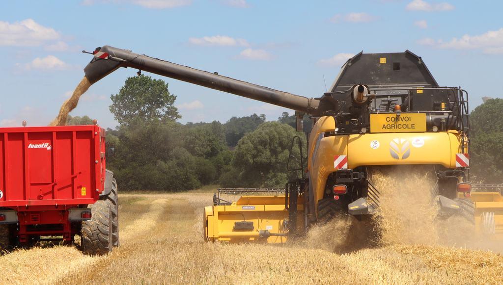bilan 2018 de la moisson en blé dur et tendre