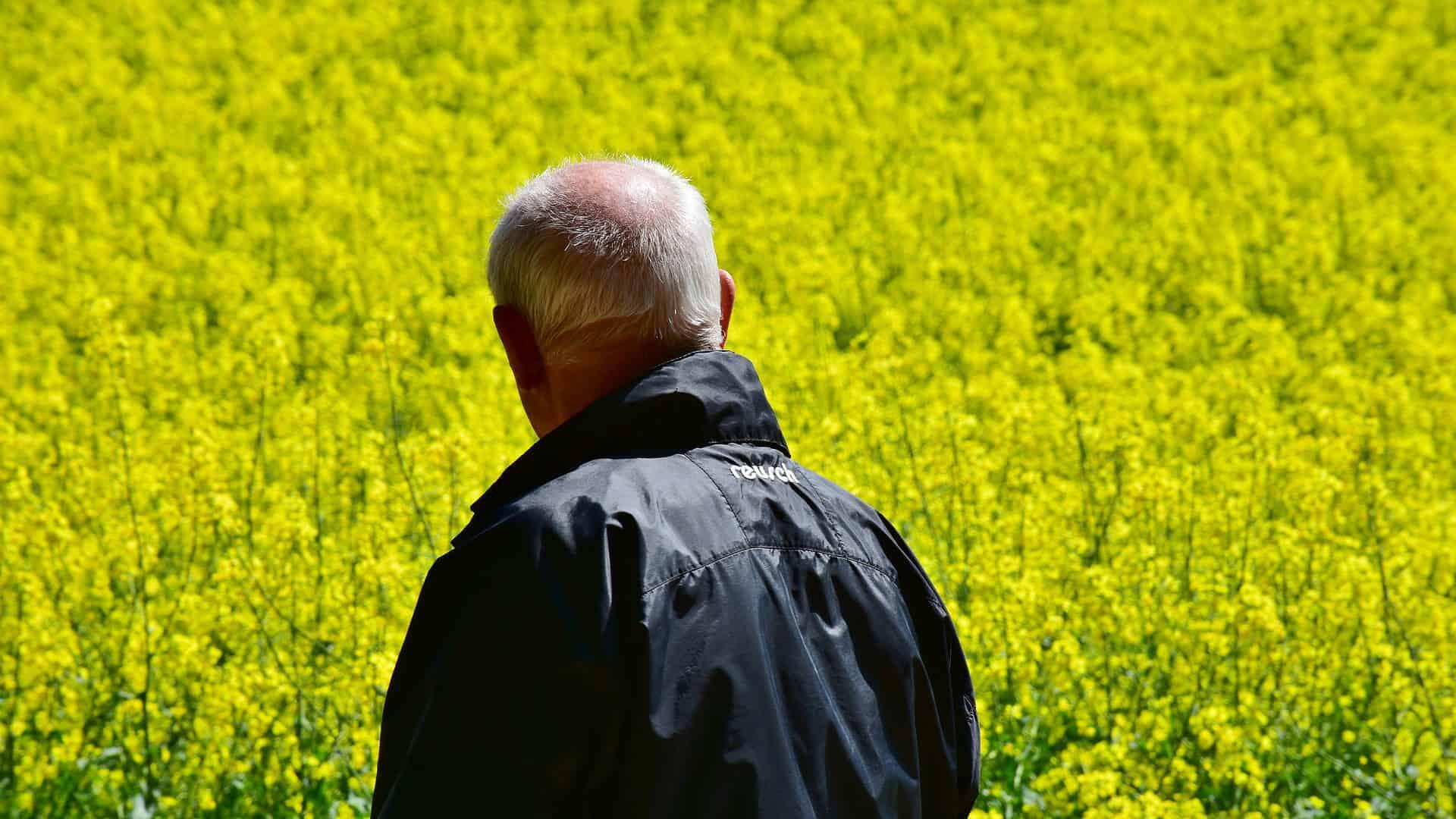 agriculteurs phénomène suicides