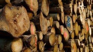 landes syviculteurs bois conseil departemental
