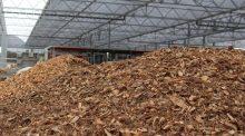 valoriser le bois en litière pour les bovins