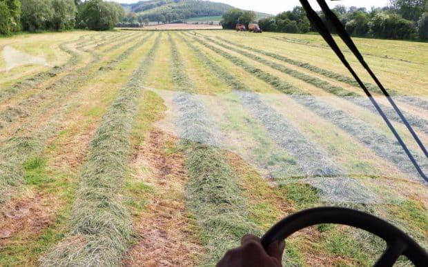 Ensileuse John Deere 8300 : elle avale les hectares