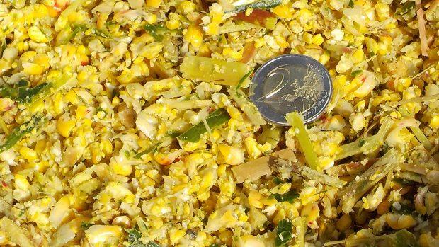 L'ensilage du maïs fourrage en brins longs - grains éclatés