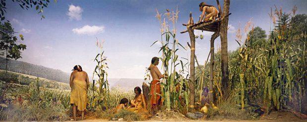 Diorama New-York muséum Amérindiens