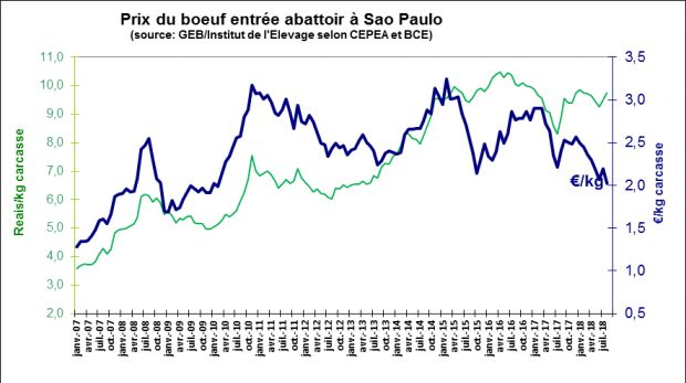 Viande bovine au Brésil : prix du boeuf entrée abattoir