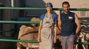 Temps libre en élevage laitier : l'EARL de la Cabriole en Haute-Garonne.