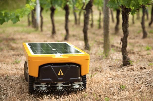 Vitirover fira 2018 robotique