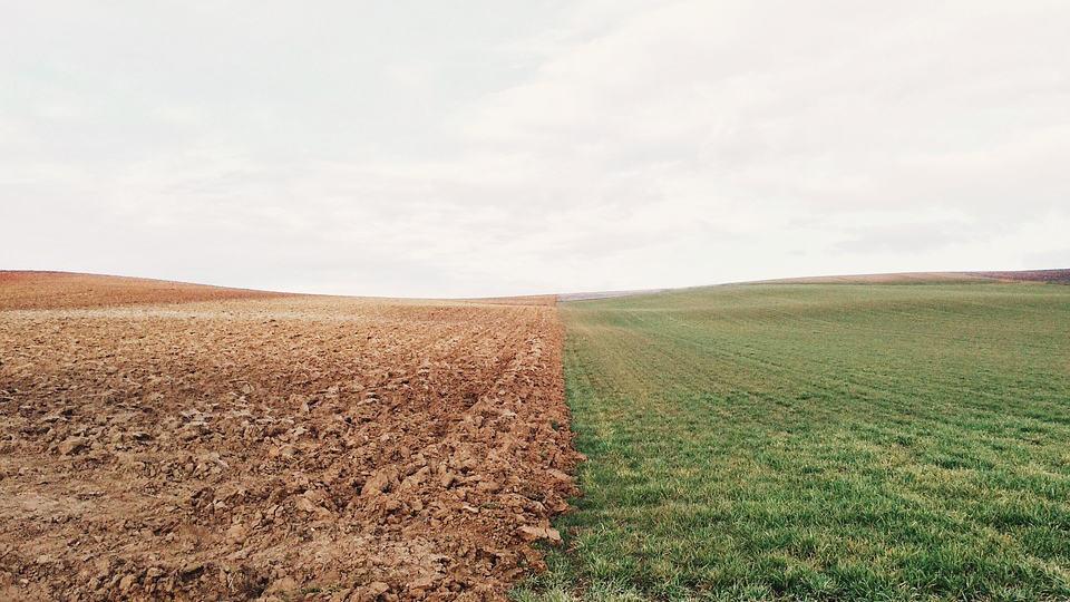 foncier agricole terre epargne verte
