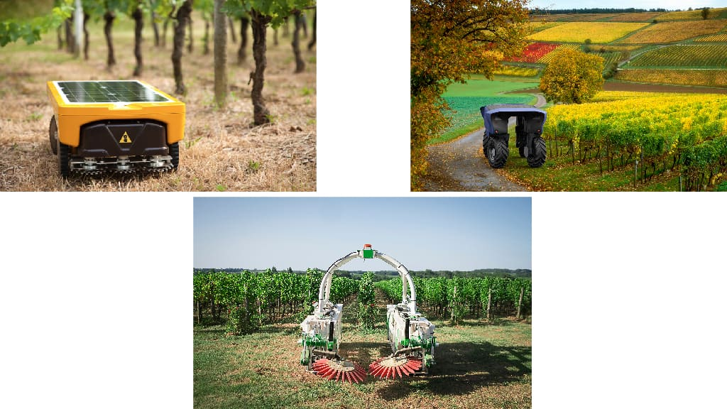 robotique solutions vignes
