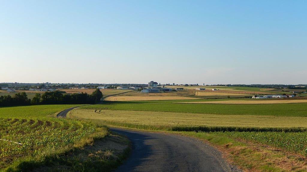Foncier agricole : les baux conclus par le GFA au preneur sont de 18 ou 25 ans.
