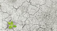 changement climatique adapter agriculture vote projet