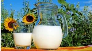 vache lait bio record 2018