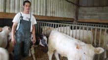 Les conditions de travail en élevage sont parfois difficiles étant donnée la charge de travail. Un série d'article pour trouver des solutions avec le GIE Elevage d'Occitanie.