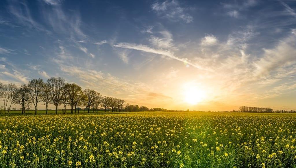 Fncuma ECLAT agroécologie