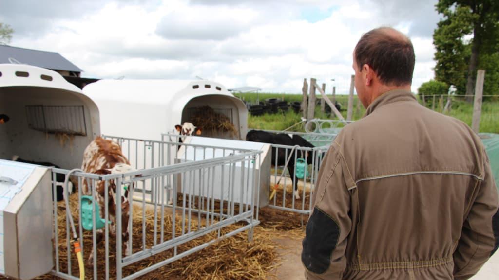 emplois agricoles economie favorable mobilisation regions apprentissage formation