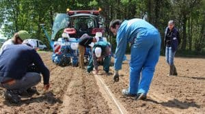 taupin, réglage du semoir, densité de semis et profondeur