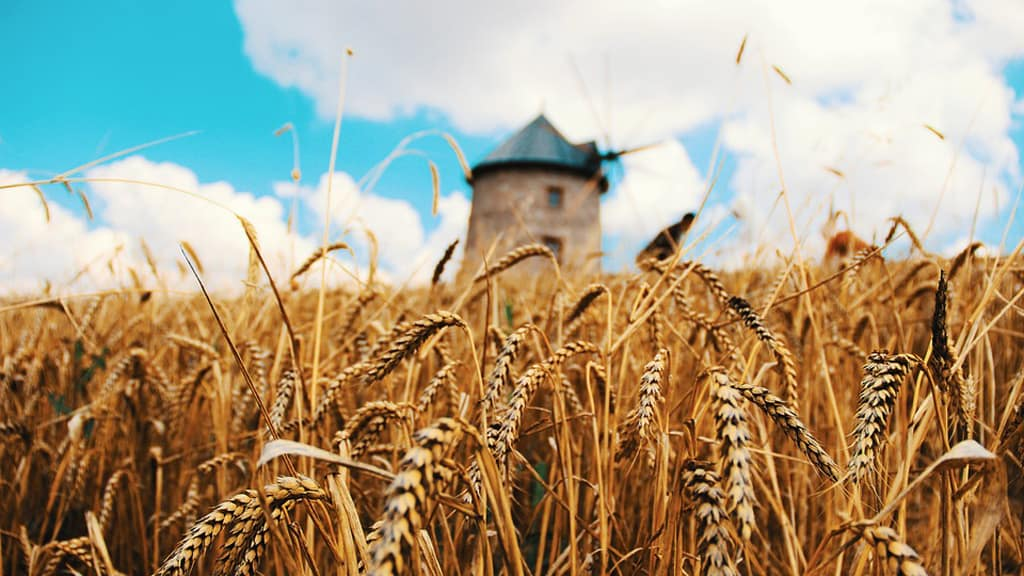 glyphosate cerealiers accompagnement financier
