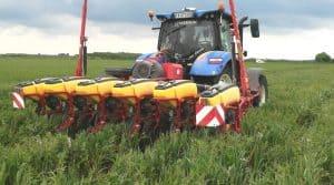 Semis direct de maïs sous couvert : Le semoir de la cuma de la Meurlette (Charente-Maritime) qui n'est pas équipé pour le semis direct, a pourtant réalisé un excellent semis de maïs sous couvert dans les terres argilo-calcaire superficielles.