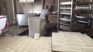 fromage au lait cru et précautions sanitaires