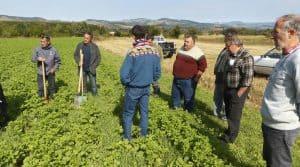 cuma des gardes experimenter formation agronome
