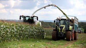 maïs fourrager au Salon aux Champs, démonstration d'ensilage de maïs