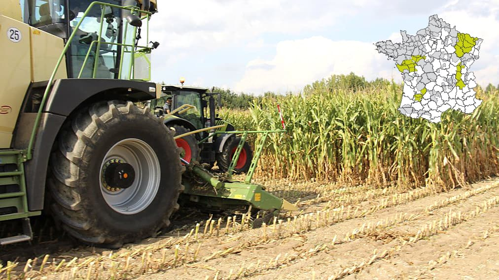 date récolte maïs ensilage 2018 date récolte maïs ensilage