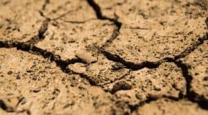 secheresse europe manque de pluie