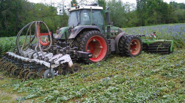 rouleau destructeur couvets semis