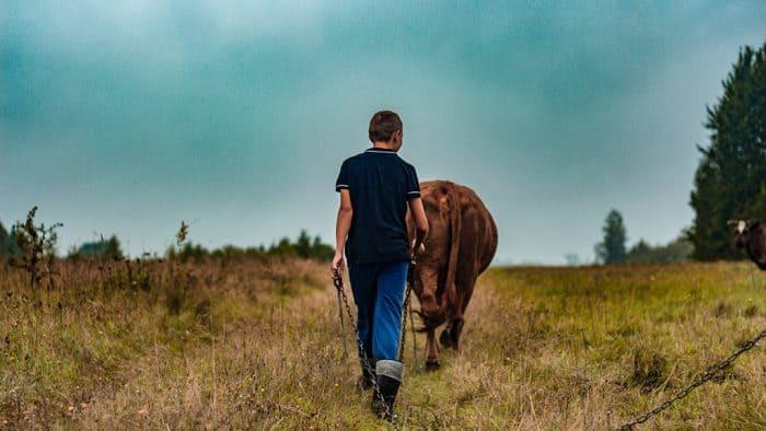 installer plus agriculteurs favoriser transition agricole