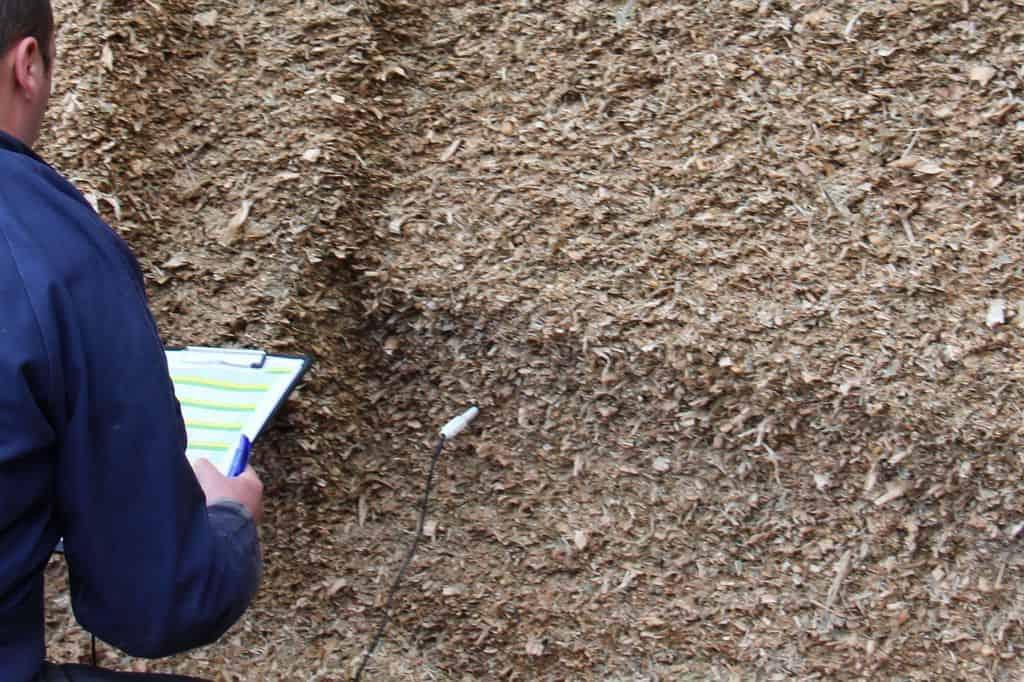 éclatement des grains, mesure de température lors d'une analyse de silo de maïs en élevage